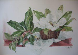 cuadro de magnolia en acuarela eva liberal