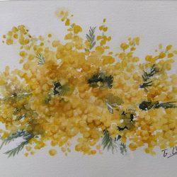 acuarelas mimosas amarillas eva liberal