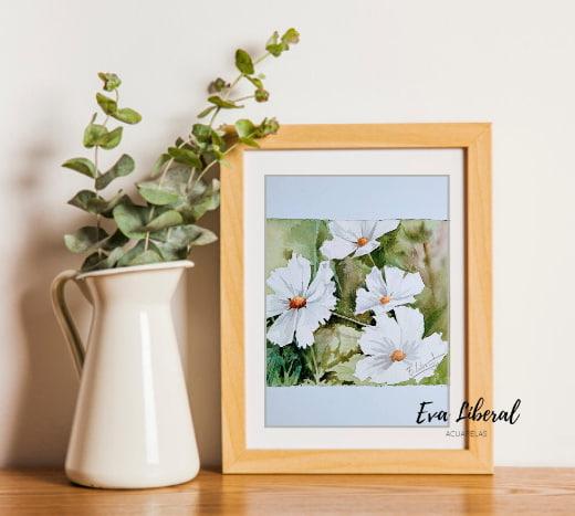 regalar-cuadros-margaritas-blancas-ideas-para-regalar-acuarelas-de-flores-eva-liberal
