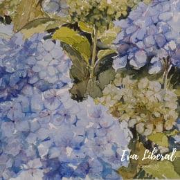 acuarelas hortensias azules eva liberalas