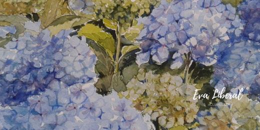 cuadro hortensias azules acuarelas flores eva liberal