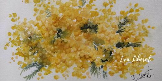 cuadro mimosas acuarelas flores eva liberal