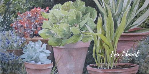 cuadro plantas flores maceta barro acuarelas eva liberal