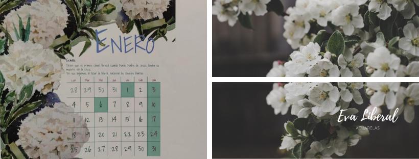 comprar-calendario-con-flores-pintadas-en acuarela-eva-liberal-ilustraciones-originales